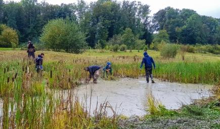Grosser Einsatz bei garstigem Wetter, auch wenn sich das Ausjäten der Teiche als schwierig herausgestellt hat.